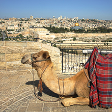 Take a Christian TourWOX with Max Lucado - Christian Tour to Israel - March 21-31, 2017